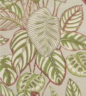 Sanderson Calathea Olive 050807